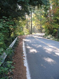 4T Trail goes along shoulder of Marquam Hill Road